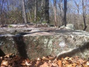 Woodspriestess: Pelvic Cradle